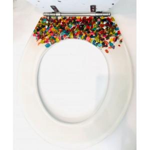 Abattant de Toilette Inclusion