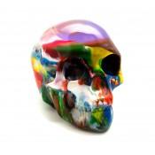 Cranio Grand Pollock K.